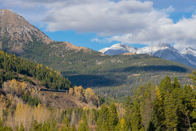 BNSF Blacktail, MT