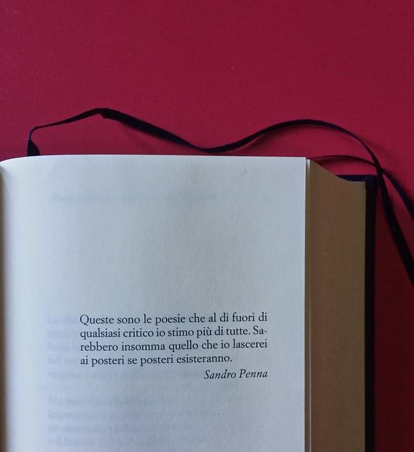 Sandro Penna, Poesie, prose e diari. Mondadori, i Meridiani; Milano 2017. Resp. gr. non indicata. Citazione in esergo, a pag. 5 [part.].