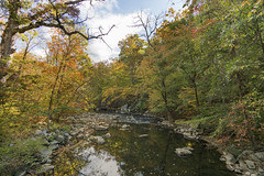Rock Creek in Autumn