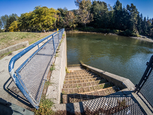 Whatcom Creek Falls and Maritime Park-008