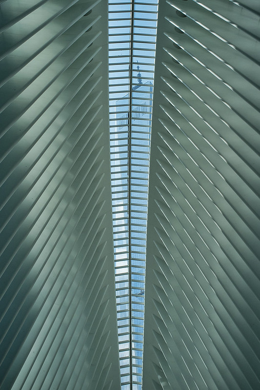 El 1WTC entre líneas