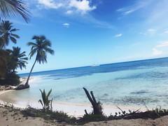 Isla Saona 🌴