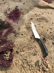 Sea Palling Beach Clean - Finds