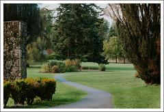 Coole Park Walk