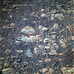 Rocks and Pebbles Near Endeavour Crater 2