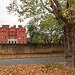 Kew - Autumn 2017 -2 20102017.jpg
