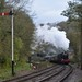 Churnet Valley Railway (5)