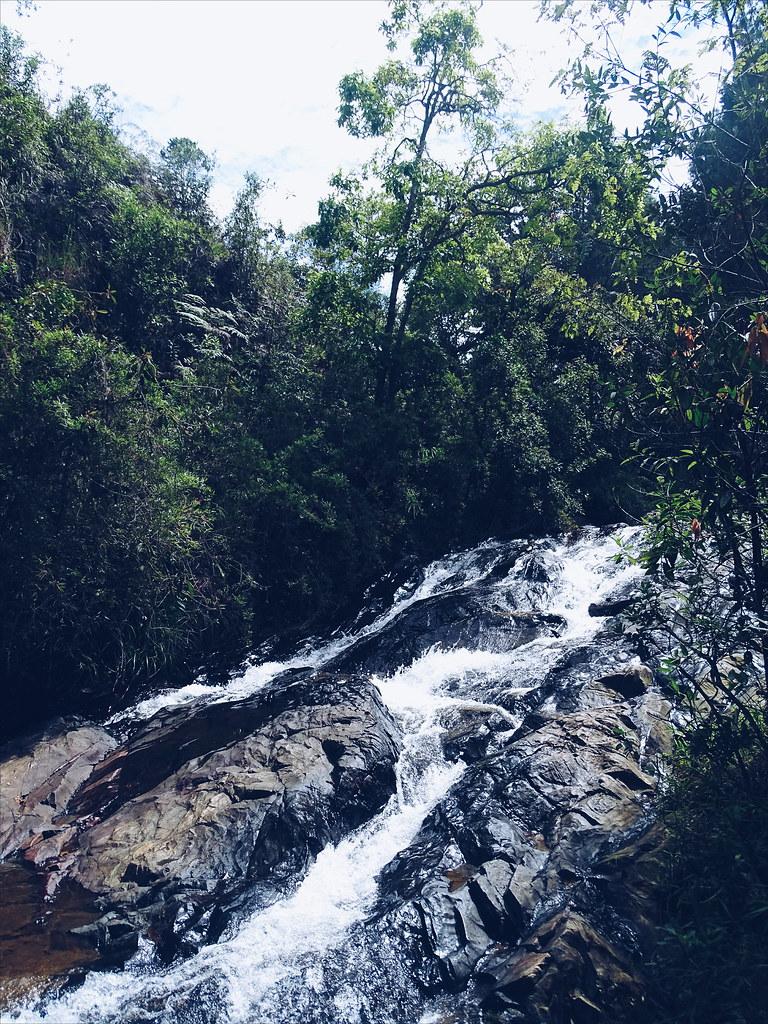Parque Arví, Medellín • COL