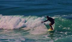 Surfing at Manhattan beach