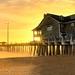 Coastal Gold by VonShawn