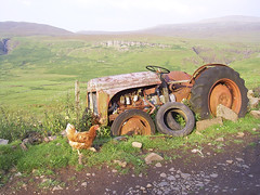 scotland 177.jpg