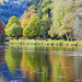 River Tay Reflections