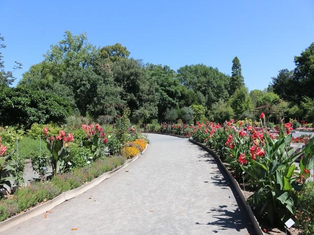 jardin des plantes obiective turistice lyon 2