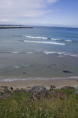 Santa Cruz surfin'
