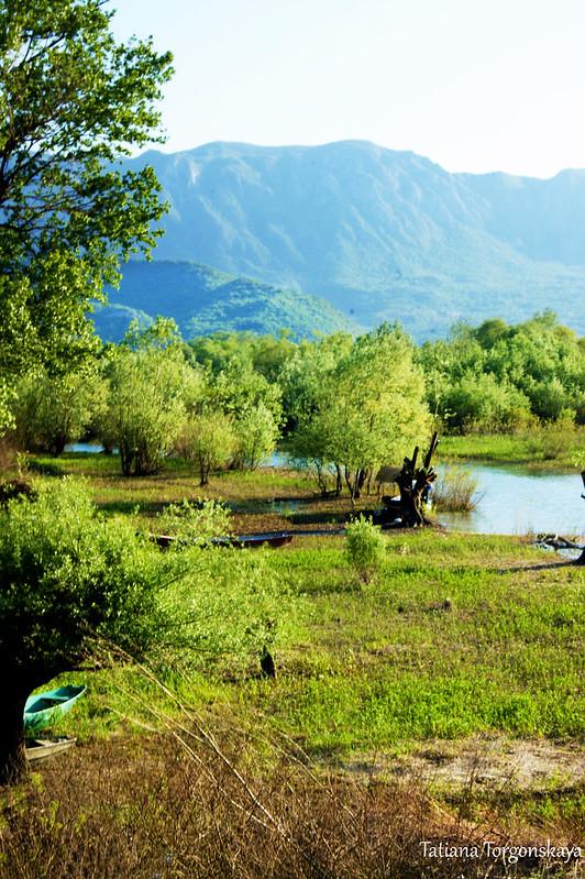 Пейзаж из Вирпазара