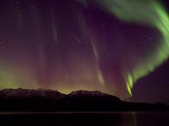 Aurora borealis-220109