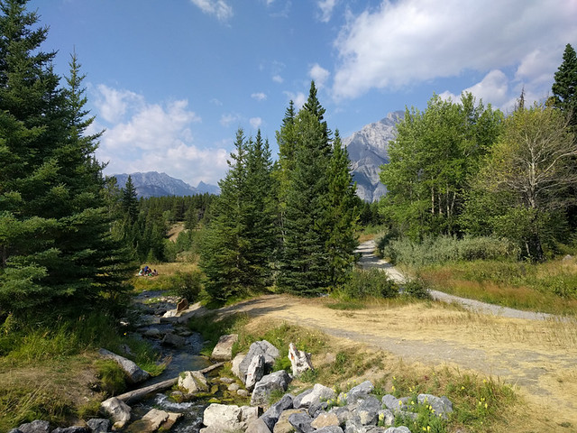 Johnson Lake trail