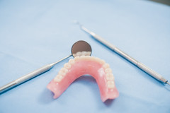 Teeth model and dental instrument