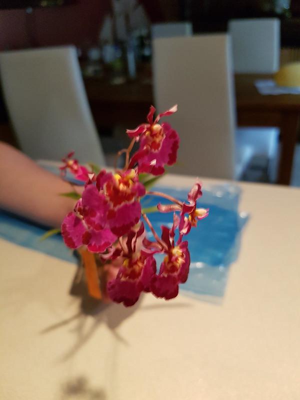 Les orchidées chez Sougriwa 37443599200_7892e7ef3f_c