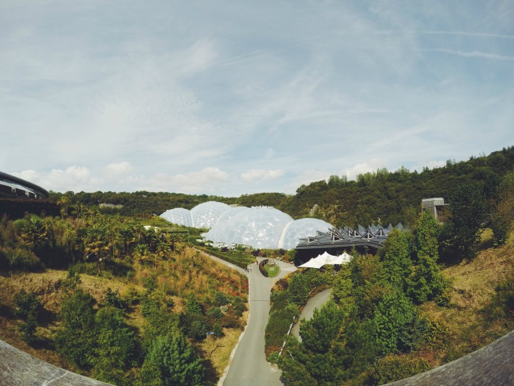 eden project landscape