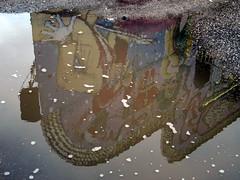 Mardi Gras Reflection.