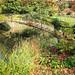 Syon House & Gardens -14 16102017.jpg