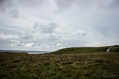 Irish plains