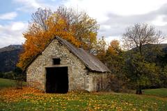 Un cœur en automne... A heart in autumn... #Darktable #NikonD90