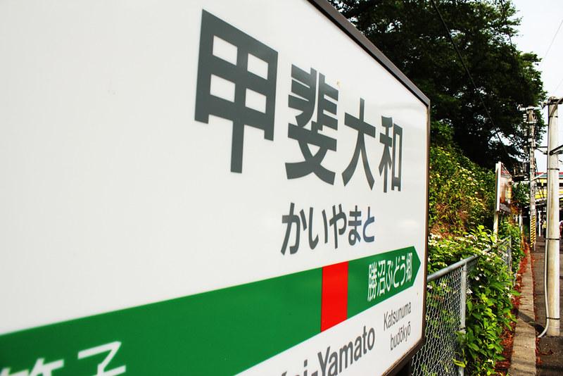 20120624_大菩薩嶺_0007