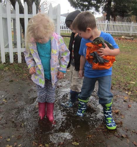 a muddy puddle