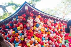 京都インスタ映えの旅 #6 八坂庚申堂