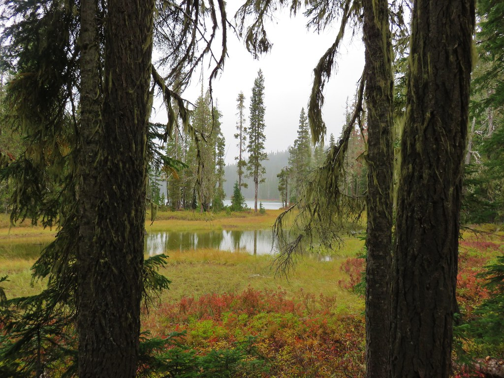 Upper Snowshoe Lake