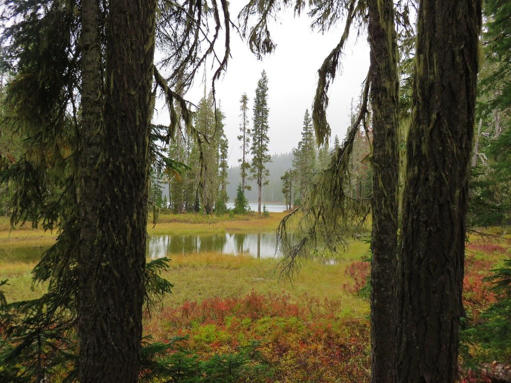 Upper Snowshoe Lake