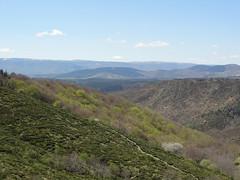 26_Vallée de la Borne et Mt Lozère