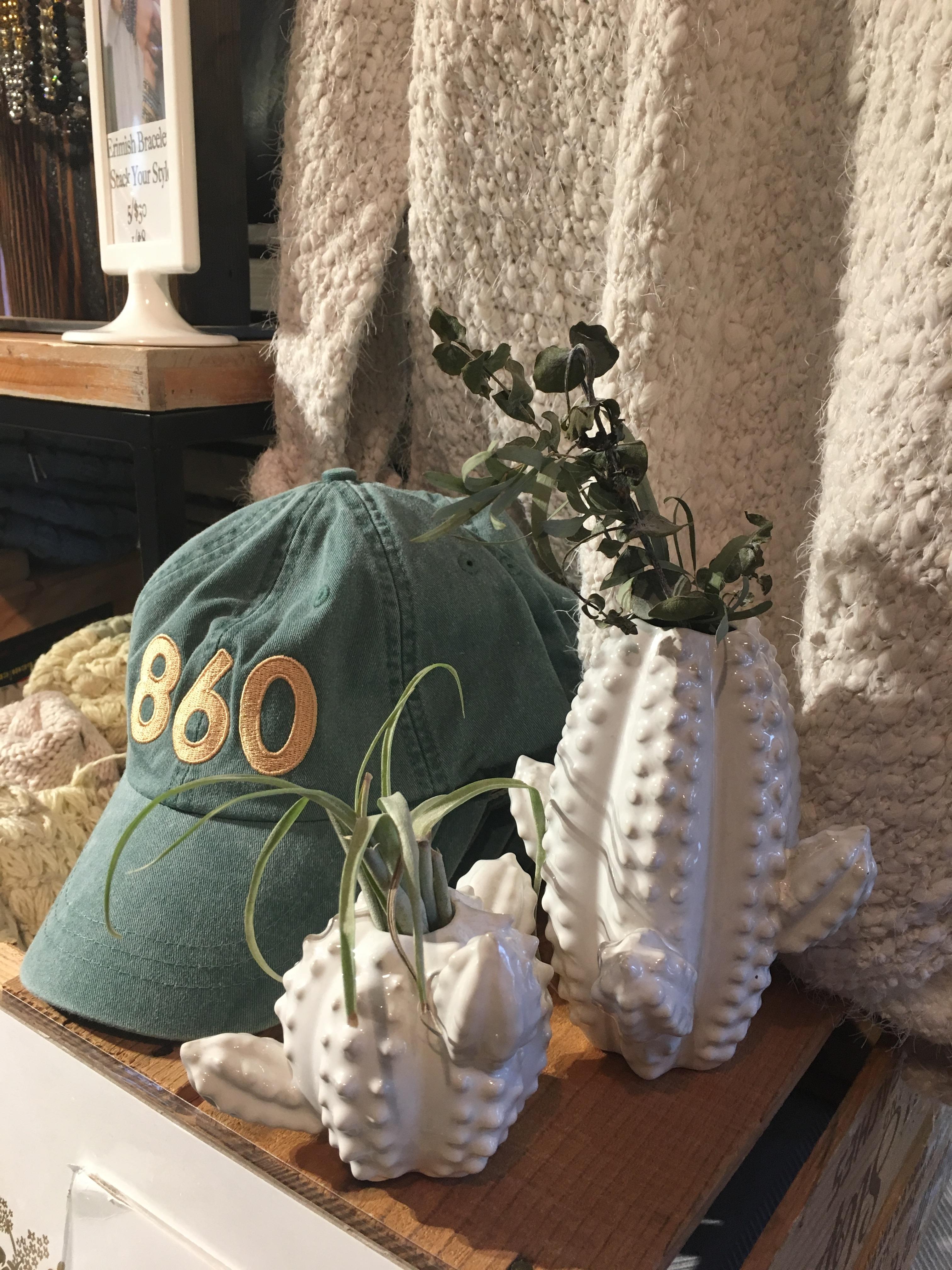 860 cap and cactus vase