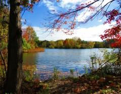 Granger Pond