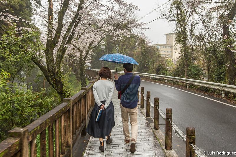 Inuyama-castillo-149