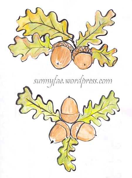 acorn-sketches-2