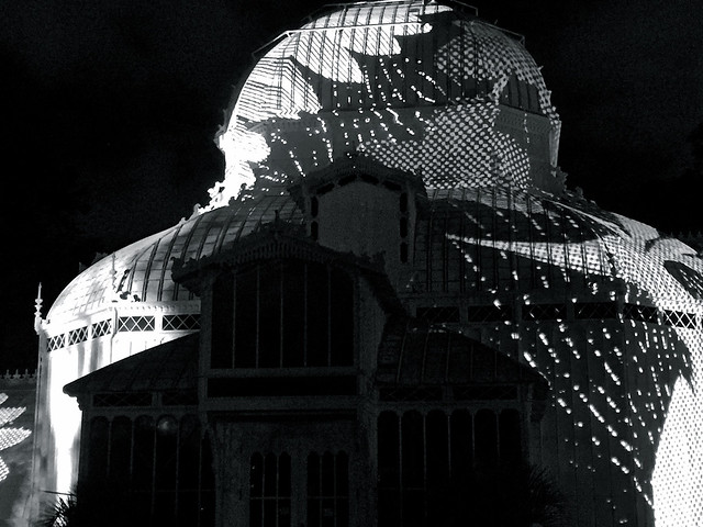 Conservatory Monochrome