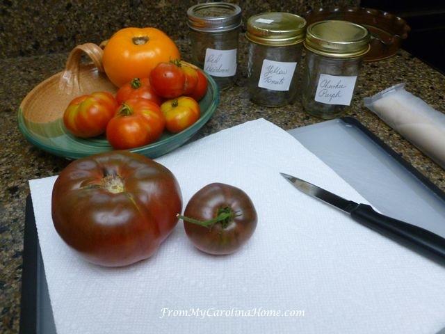 Saving Tomato Seeds at From My Carolina Home
