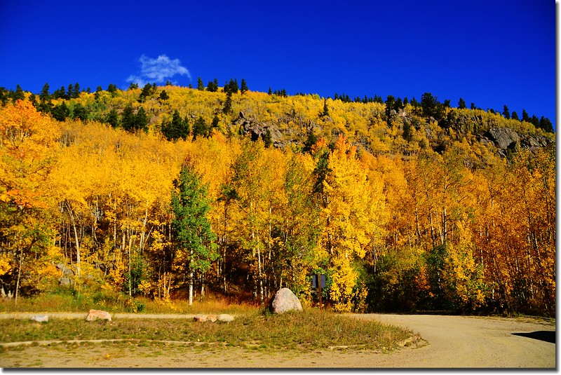 Fall colors, Mount Evans Scenic Byway, Colorado (20)