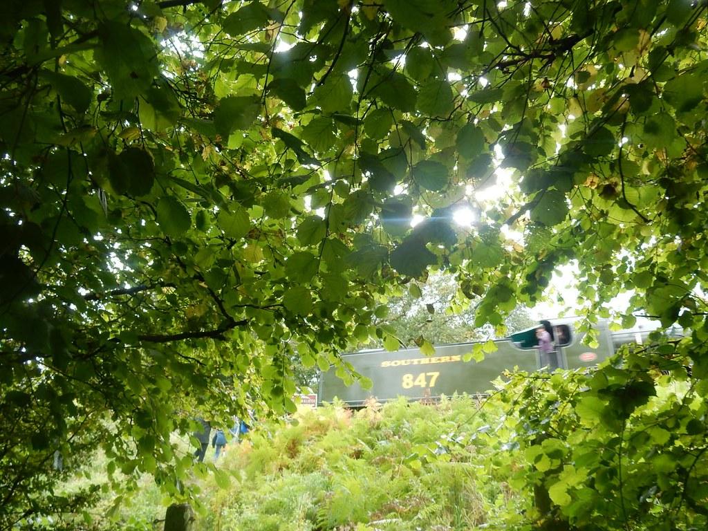 The Bluebell Line Haywards Heath Circular