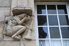 window & creature
