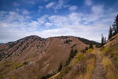 The Abajo Mountains (10-2-17)