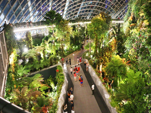 gardens by the bay cloud dome Gradini si Parcuri din Singapore 4