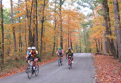 IMG_1583a Sunday - Mike B reaching the top of Bean Blossom road