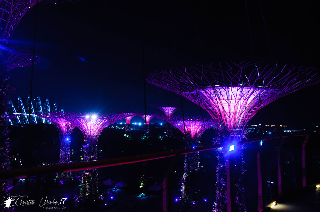 The Gardens by the Bay OCBC Skyway