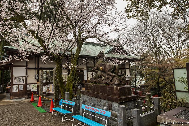 Inuyama-castillo-42