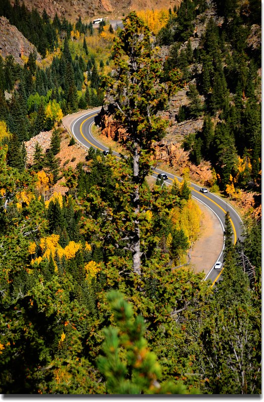 Fall colors, Mount Evans Scenic Byway, Colorado (37)