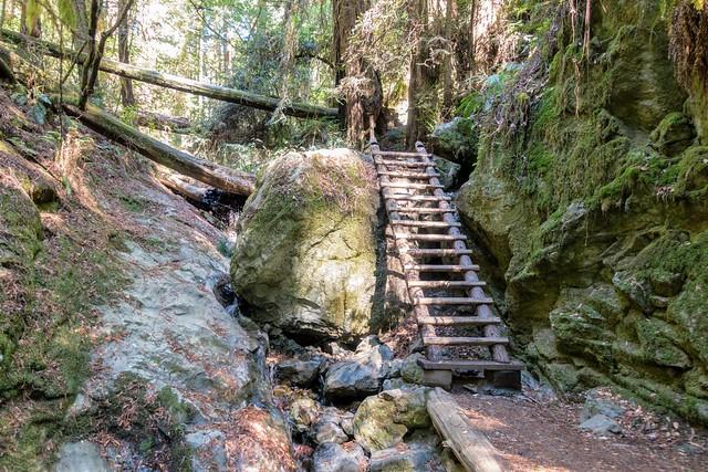 Ladder on Steep Ravine Trail